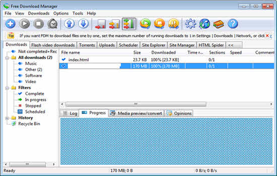 Using Download Manager Softwares