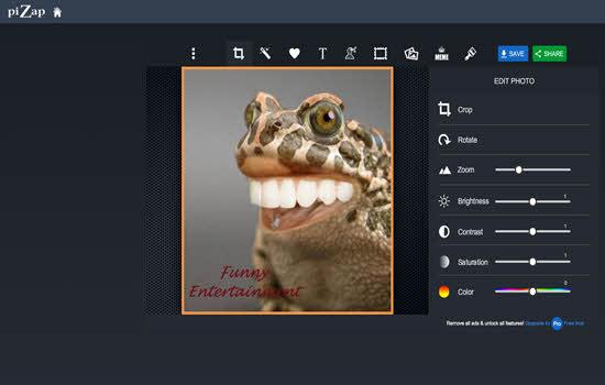 PicZap Online image Editor 2016