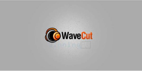 WaveCut Audio Editor License Key